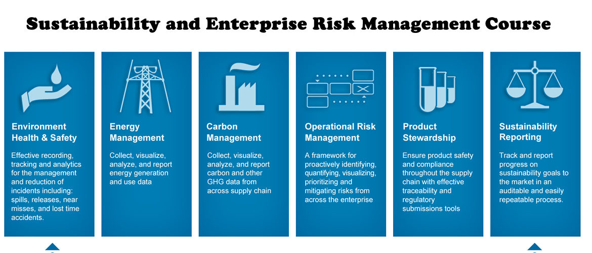 Sustainability and Enterprise Risk Management: Managing